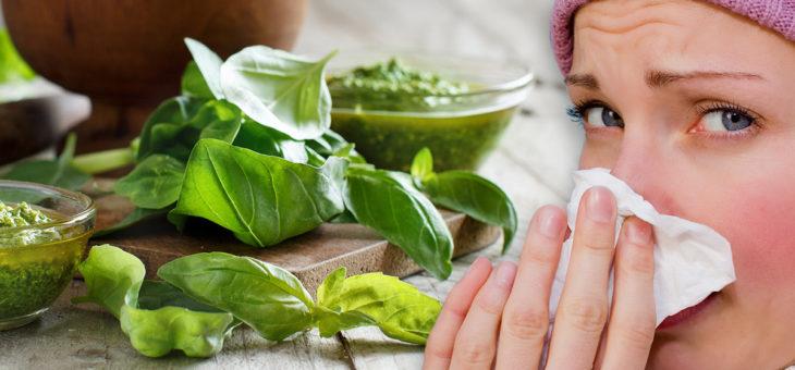Lo sapevi che…il basilico combatte raffreddori e malattie della pelle?
